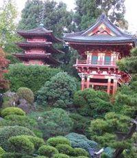 создание японского сада