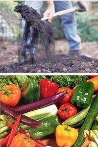 как обрабатывать почву