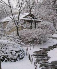 зимние заботы садовода