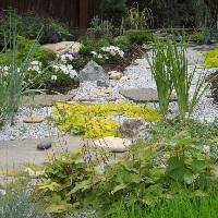 сухой ручей в саду