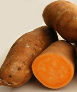 сладкий картофель - батат выращивание