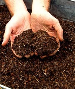 Качественный компост