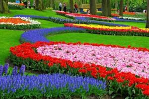 Дизайн голландского сада
