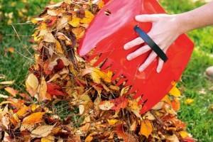 Листья в компост