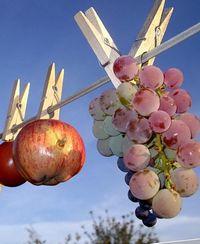 как сушить фрукты