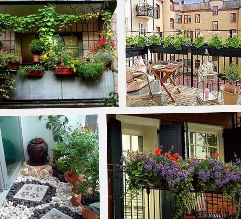 Озеленение балкона во саду и в огороде.