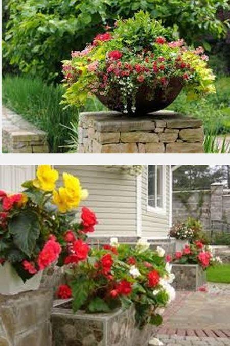 применение цветов в контейнерном озеленении
