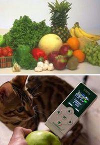 причины нитратов в овощах и фруктах