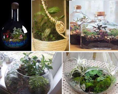 сад в бутылке украшение интерьера
