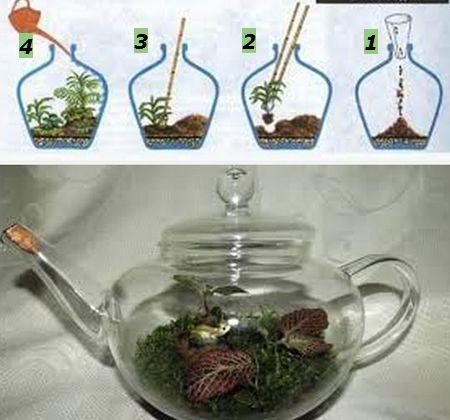 как создать сад в стеклянной емкости