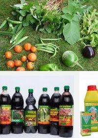 вещества стимулирующие рост растений