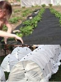 защита агротексом
