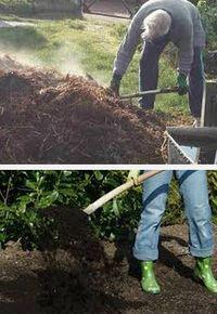 правила удобрения почвы