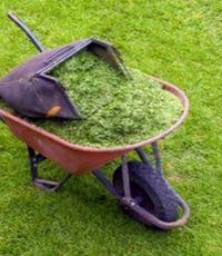 как применять скошенную траву с пользой