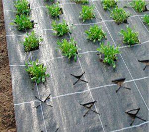 укрывной материал для растений