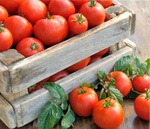 как сохранить помидоры в домашних условиях