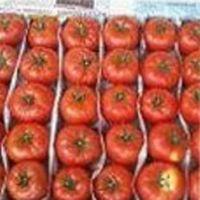 как лучше сохранить помидоры