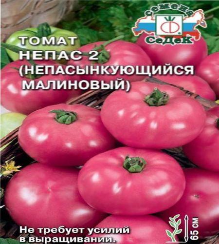 помидоры Непас