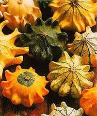 декоративная тыква,сорта