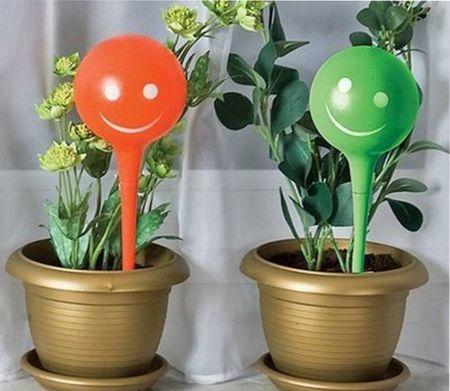 системы автополива для комнатных растений
