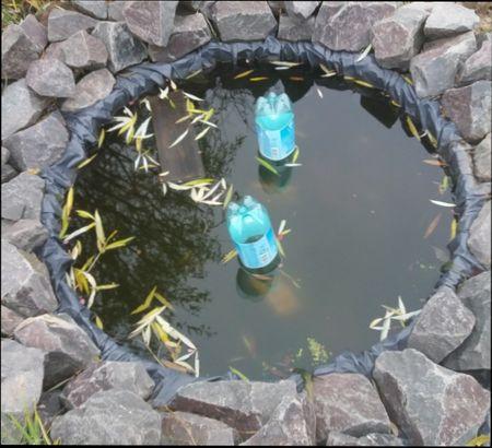Подготовка водоема к зиме на даче