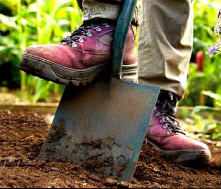надо ли копать грядки осенью