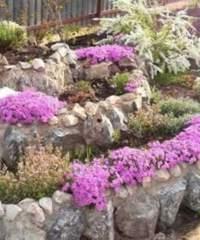 Использование камней в оформлении цветников
