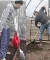 Чем обеззаразить почву на грядках и в теплицах после сбора урожая?
